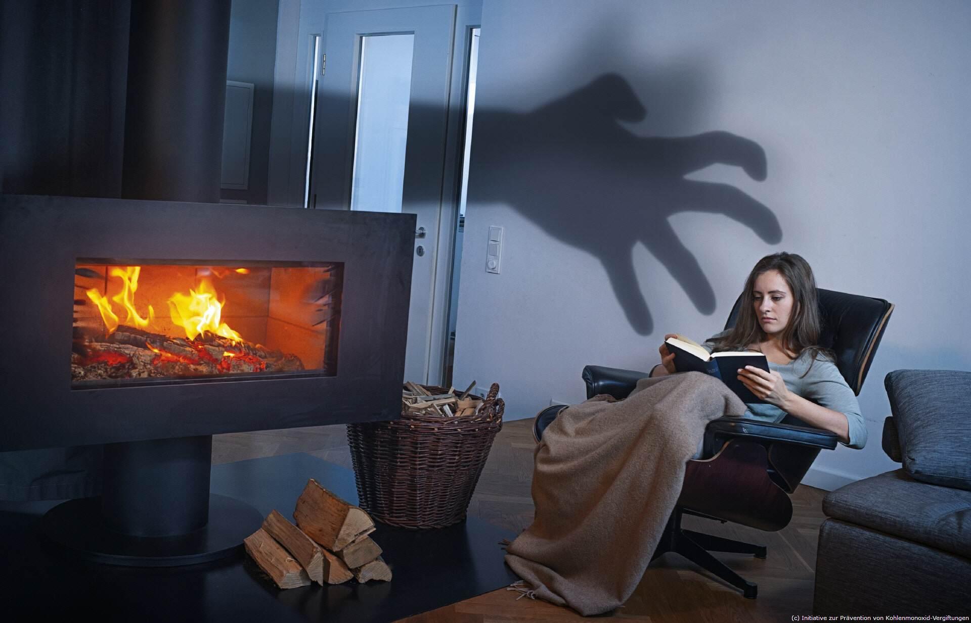 heizen mit holz erneuerbaren energien tipps f r. Black Bedroom Furniture Sets. Home Design Ideas